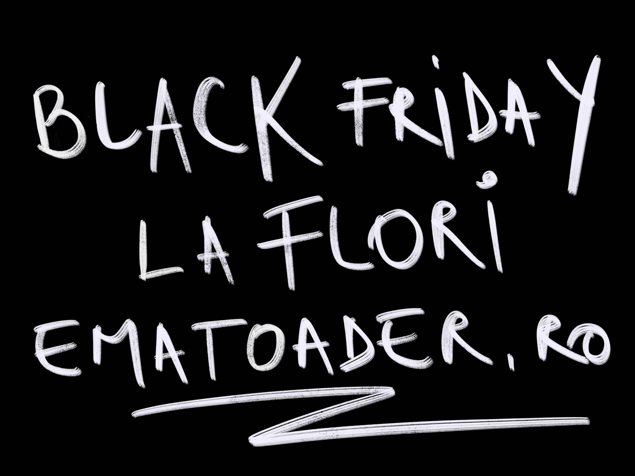 Black Friday La Flori Si Aranjamente Florale